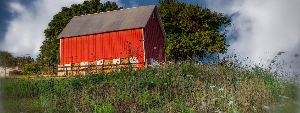 Ozark Homes for Sale 2