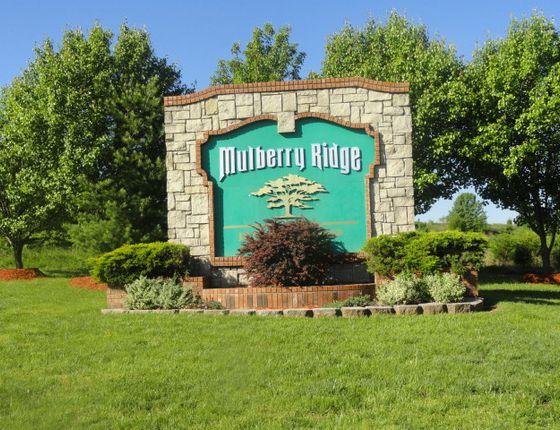 Photo 1 of Mulberry Ridge