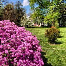 Phelps Grove Park