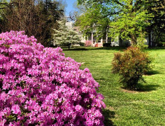 Photo 1 of Phelps Grove Park