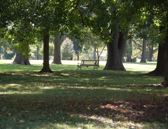 Photo 4 of Phelps Grove Park