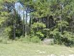Lot 1 Kicking Mule Lane Lampe, MO 65681