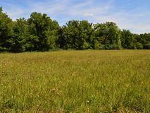 0 North Farm Rd 87 Willard, MO 65781, Willard Homes For Sale - Image 5