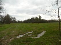 N/A South Farm Rd 75 Republic, MO 65738, Republic Homes For Sale - Image 1