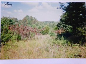 Tbd B B Highway Chestnutridge, MO 65630 - Image