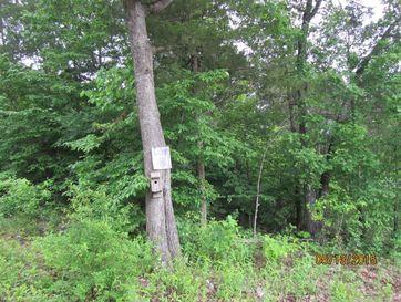 295 Shore Acre Dr. Drive Powersite, MO 65731 - Image 1