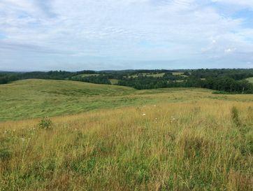 Tbd Highway 95 Drury, MO 65638 - Image 1