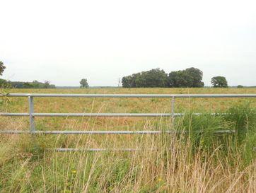 Tbd State Highway M Everton, MO 65646 - Image 1