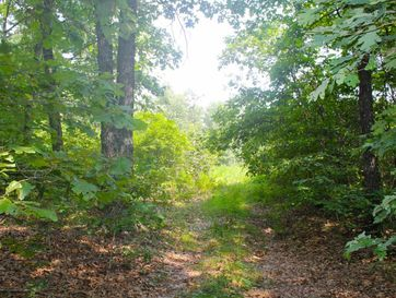 Lot 10 Misty Mountain Drive Bruner, MO 65620 - Image 1