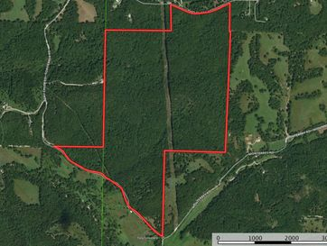 Tbd Two Rivers Road Highlandville, MO 65669 - Image 1