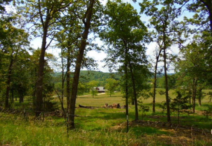 000 Farm Rd 2145 Jenkins, MO 65605 - Photo 19