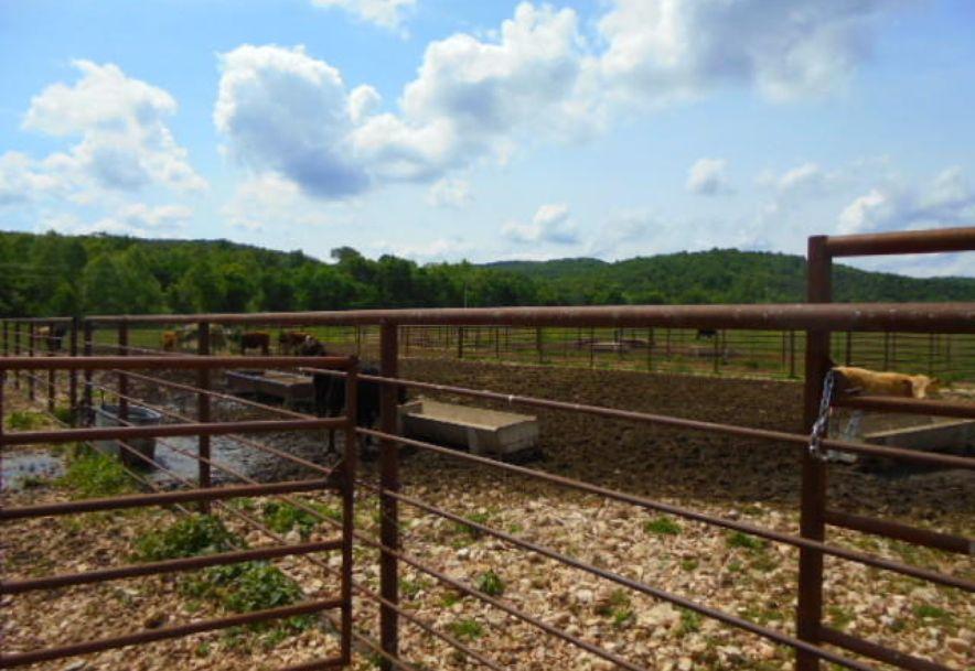 000 Farm Rd 2145 Jenkins, MO 65605 - Photo 21