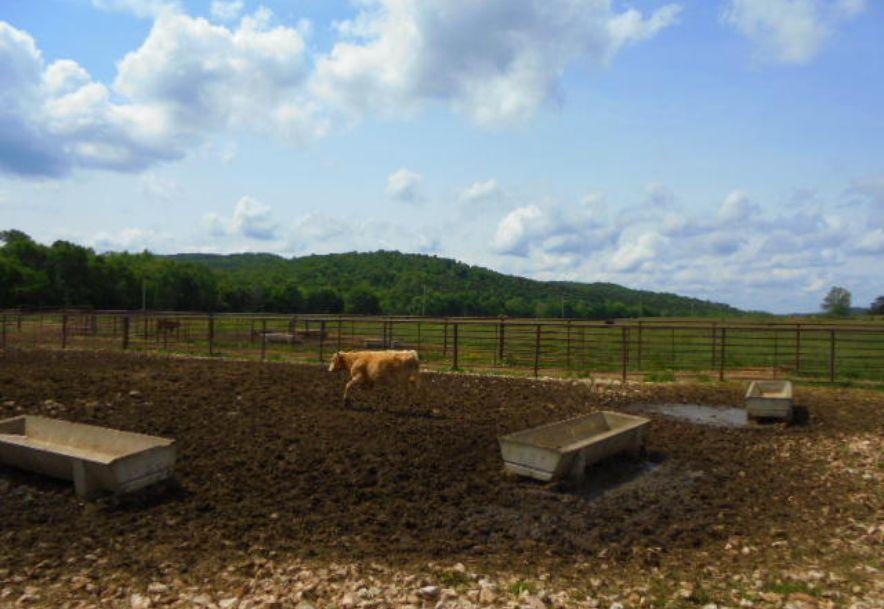000 Farm Rd 2145 Jenkins, MO 65605 - Photo 23