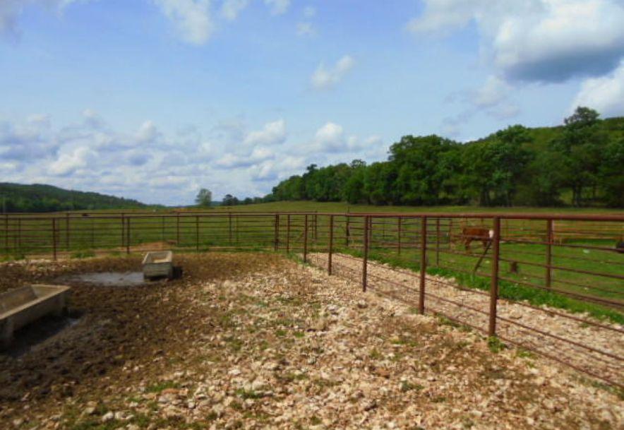 000 Farm Rd 2145 Jenkins, MO 65605 - Photo 24