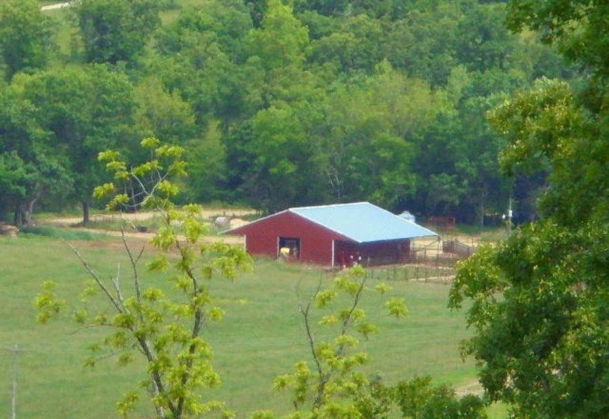 000 Farm Rd 2145 Jenkins, MO 65605 - Photo 32