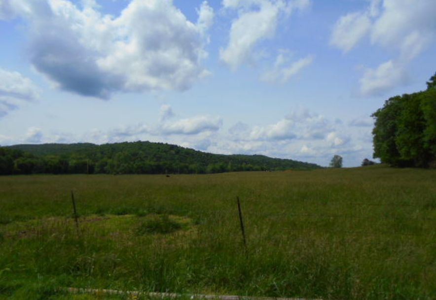000 Farm Rd 2145 Jenkins, MO 65605 - Photo 39