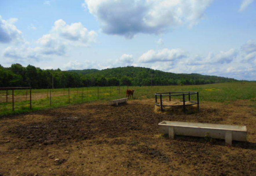 000 Farm Rd 2145 Jenkins, MO 65605 - Photo 41