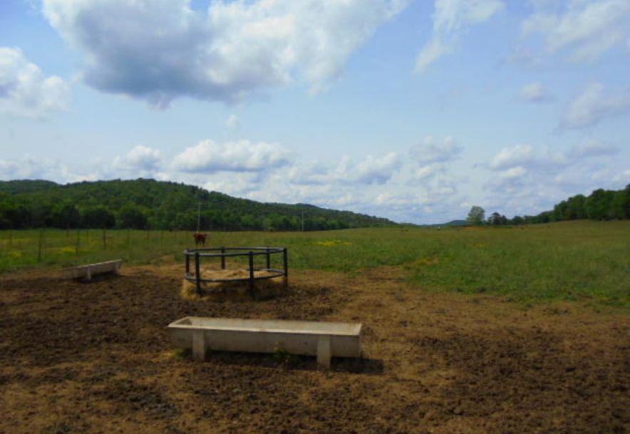 000 Farm Rd 2145 Jenkins, MO 65605 - Photo 42