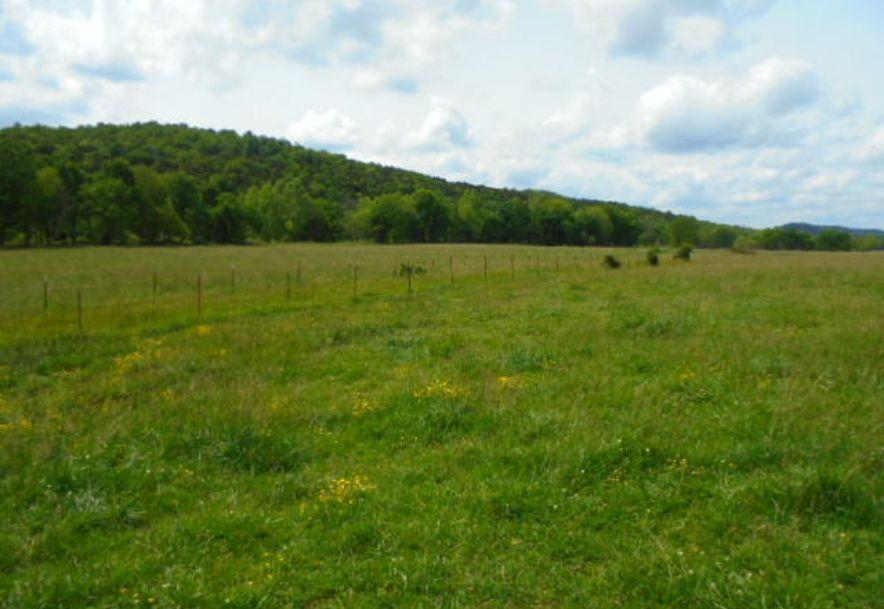 000 Farm Rd 2145 Jenkins, MO 65605 - Photo 47