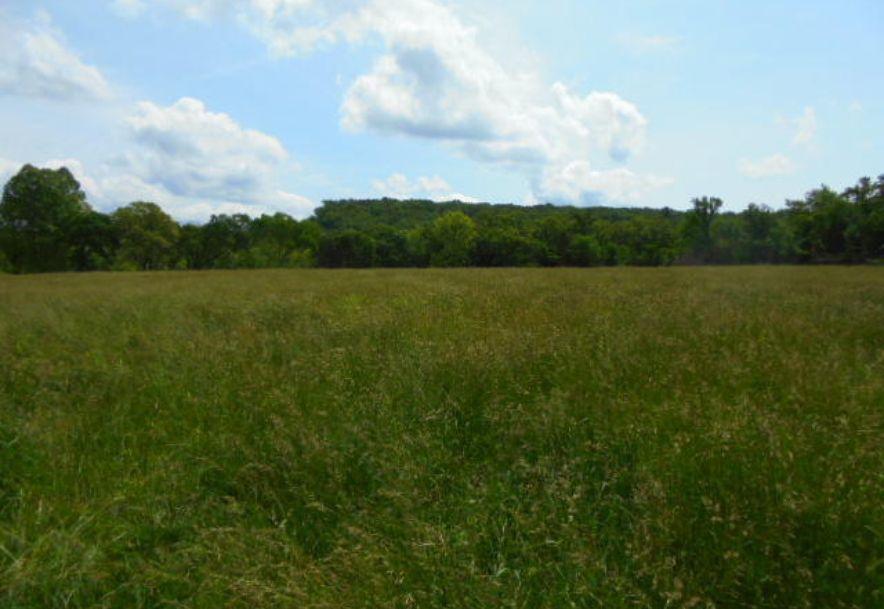 000 Farm Rd 2145 Jenkins, MO 65605 - Photo 51