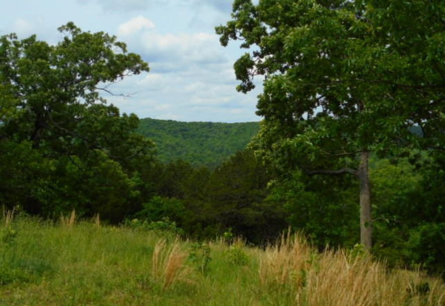 000 Farm Rd 2145 Jenkins, MO 65605 - Photo 54
