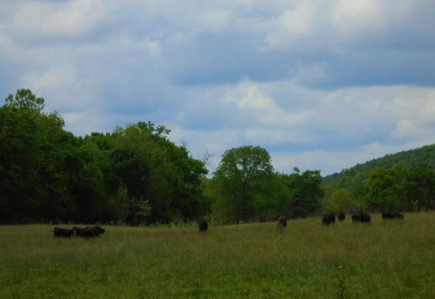 000 Farm Rd 2145 Jenkins, MO 65605 - Photo 62