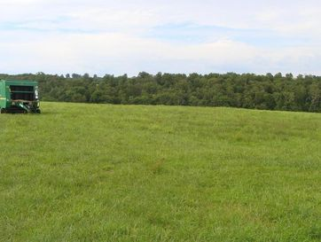 000 Rock Springs Road Cabool, MO 65689 - Image 1