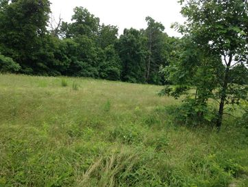 0 Lookout Bruner, MO 65620 - Image 1