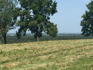 0 Brushy Mound Road Buffalo, MO 65622 - Image 1