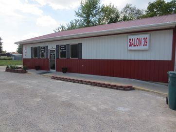 311 North Highway 39 Miller, MO 65707 - Image 1