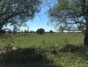 1800 Gypsy Flats Fordland, MO 65652 - Image 1