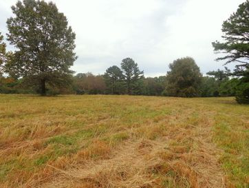 Tbd County Road 239 Norwood, MO 65717 - Image 1