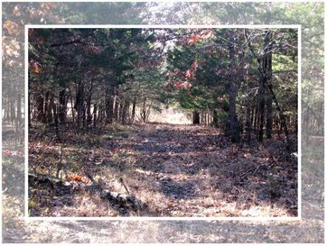 0 N Highway Humansville, MO 65674 - Image 1